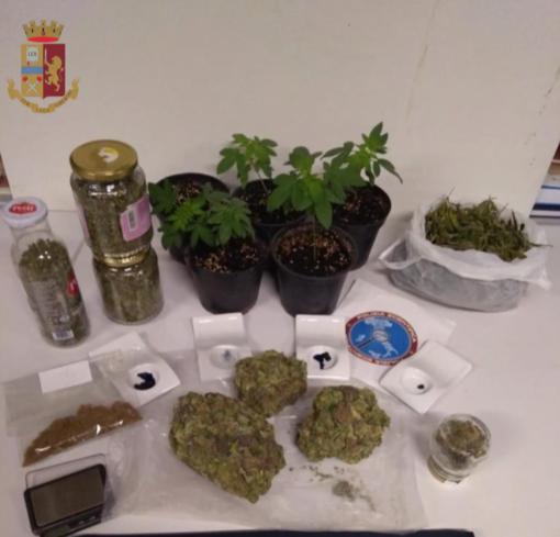 Una serra per coltivare marijuana nell'azienda di famiglia: nei guai 24enne di Piasco
