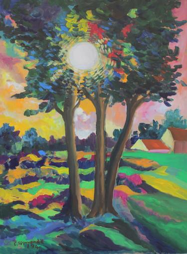 """""""Sinfonie di colori"""" mostra del pittore Carlo Sismonda a Cherasco"""