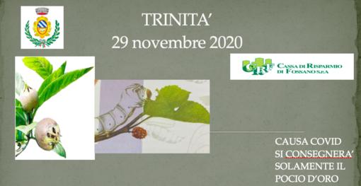 """Trinità: la storica fiera """"dij pocio e dij bigat"""" si reinventa in una edizione streaming"""