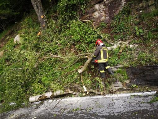 L'intervento dei Vigili del fuoco sulla Bagnolo-Montoso