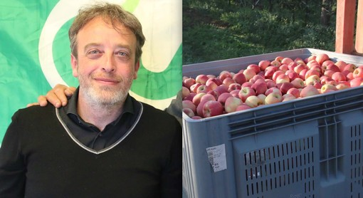 Il direttore di Cia Cuneo, Igor Varrone, e la raccolta delle mele