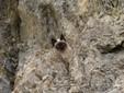 Scatti che documentano l'impresa di Willy sulla Rocca La Meia