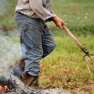 Qualità dell'aria, Coldiretti Cuneo: estendere deroga 30 giorni su abbruciamenti vegetali a tutti i Comuni
