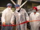 Fossano, nello stabilimento Agnesi la nuova linea di pasta con incarto compostabile: 42 milioni di confezioni di plastica in meno
