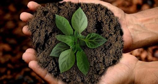 """Somano è il primo comune del Cuneese ad aderire alla """"Giornata nazionale della gentilezza ai nuovi nati nel 2020"""""""