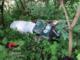 Abbandona rifiuti in strada a Vignolo: cuneese sanzionato per 600 euro dai carabinieri forestali