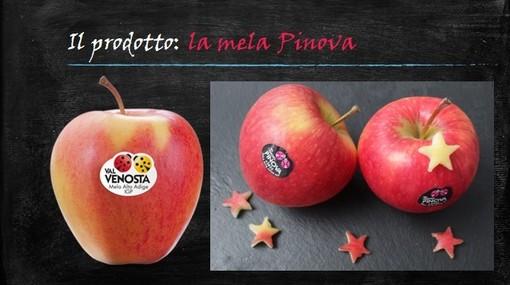 Felici & Veloci, la nuova Ricetta AutograFATA di Fata Zucchina. Oggi prepariamo gli apple donuts