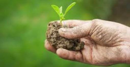 Cia Cuneo: occorre una riflessione sulla mancanza d'acqua in agricoltura