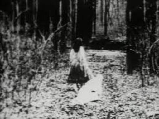 (Co)videodrome #3: Begotten, il cinema della crudeltà