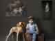 Organizzare un funerale per cani: come fare passo dopo passo