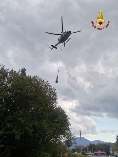 Bovino cade da un dirupo a 1.800 metri di quota, recuperato da elicottero