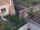 Pomeriggio movimentato a Morozzo: vigili del fuoco e carabinieri all'inseguimento di un capriolo per le vie del paese