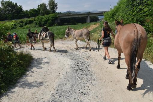 """""""Grande festa del cammino"""": da Nizza a Cuneo, arrivano in città i camminatori delle Alpi"""