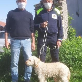 L'Unità Medico Veterinaria Volontaria di Fossano collabora con un progetto di ricerca del Dipartimento di Scienze Veterinarie di Torino