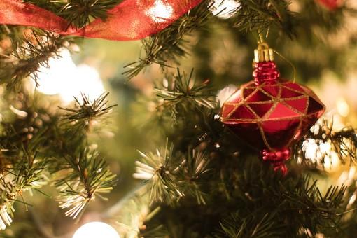 A Boves sarà un Natale ricchissimo: non mancherà il magico villaggio degli Elfi