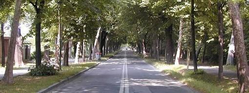 Cuneo: disposta la chiusura nel weekend dell'area pedonale di Viale Angeli