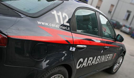 """""""Non c'è stata violenza tra me e la mia convivente, entrate pure"""": i carabinieri gli trovano in casa una serra di marijuana, nei guai un cuneese"""
