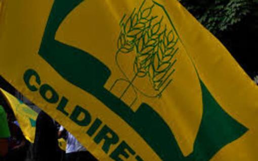 """Recovery Plan: """"sì"""" del Governo alle sollecitazioni Coldiretti per una svolta green"""