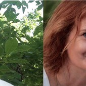 I due nuovi assessori Pierandrea Camelia e Paola Gula