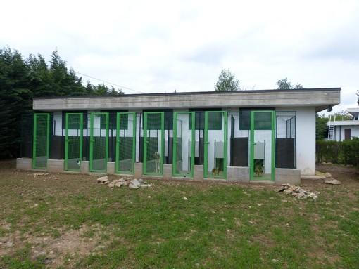 Porte aperte al canile rifugio di Cuneo