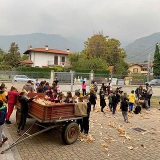 """""""Il despei del pignulet"""": un pomeriggio diverso per gli alunni della scuola di Villar San Costanzo"""