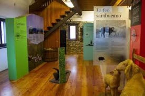 In valle Stura continuano i laboratori organizzati dall'Ecomuseo della Pastorizia di Pontebernardo