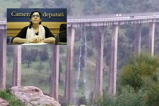 Una delle immagini che sta circolando sui social network. In alto a sinistra la deputata Fabiana Dadone
