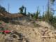 Carabinieri forestali bloccano il taglio e la distruzione di un bosco su una collina di Narzole