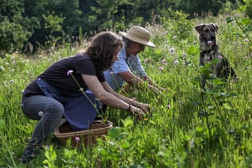 Rossana, a passeggio nell' orto dell'erborista alla scoperta dei suoi segreti