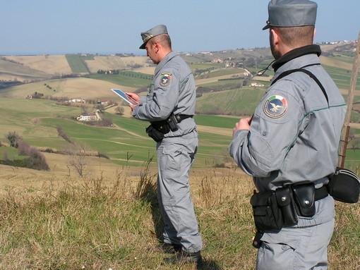 Continuano le verifiche dei Carabinieri e della Forestale per il possibile avvistamento di un'orsa con cucciolo a Fossano