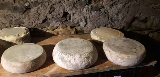 Dai formaggi alle acciughe alle composte: laboratori di degustazione dell'Ecomuseo dell'alta Valle Maira