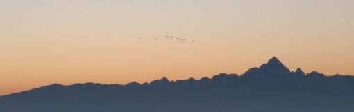 Racconigi: tramonto con le gru sui cieli dell'Oasi del Centro Cicogne