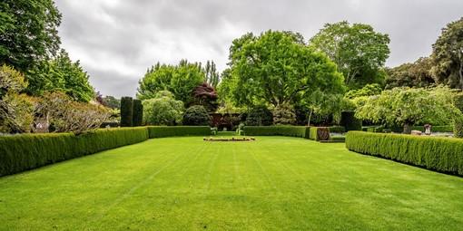 Come curare un giardino trascurato nel tempo?