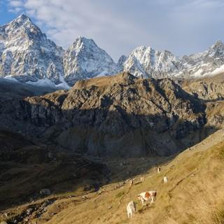 Come gestire un'impresa di montagna e il francese turistico: due corsi gratuiti della Camera di Commercio