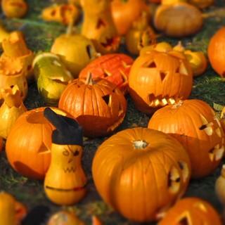 Halloween al Museo Eusebio di Alba