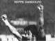 """""""Pulici, il mito"""", è il titolo dell'ultimo libro granata scritto da Beppe Gandolfo"""