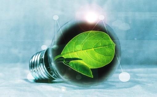 Yepp Valle stura propone un ciclo di webinar per scoprire scelte di vita sostenibili