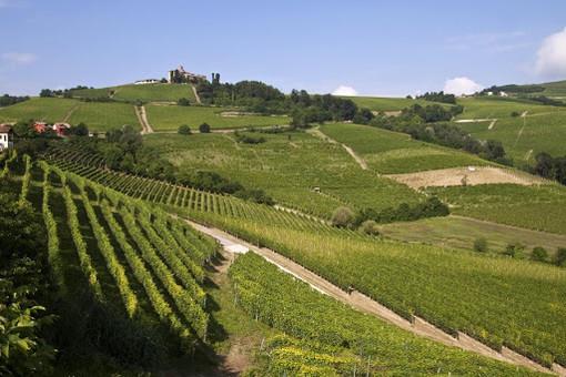L'Ente Turismo Langhe Monferrato Roero prepara la ripartenza del settore turistico