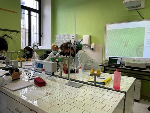 Il Liceo di Bra riparte con il potenziamento Biomedico: oltre 100 liceali interessati