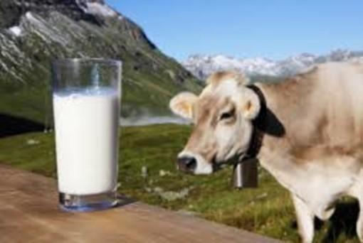Cura Italia: Lega, bene approvazione Odg in difesa delle stalle che producono latte italiano