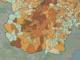 In marrone scuro evidenziati i centri con un indice di 18 positivi ogni 1.000 abitanti