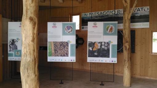 """Cuneo, al via alla Casa del Fiume la mostra """"CClimaTT – Cambiamenti Climatici nel Territorio Transfrontaliero"""""""