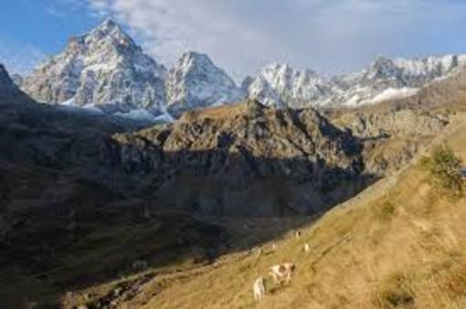 Fondo Nazionale per la montagna: al Piemonte 777 mila euro