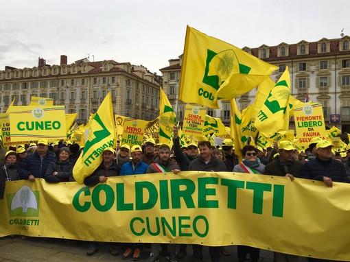 """Quattromila agricoltori dalla Granda in piazza a Torino al grido di """"Bôgia Piemunt: il tuo futuro siamo noi!"""""""
