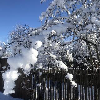 Un po' di neve in pianura e crollo delle temperature, con gelate estese e nebbie