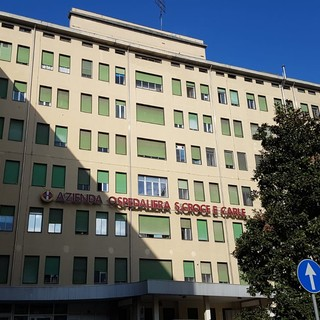 Una betulla per ricordare i volontari AVO: sarà piantata davanti al Santa Croce di Cuneo