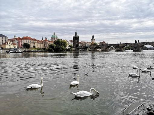 Anche a Praga si legge Targatocn ... e voi?