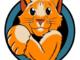 In rete è approdato un nuovo motore di ricerca video che ha un gatto come emblema ed è multilingue e senza censure