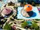 L'offerta turistica cuneese per i bambini turisti