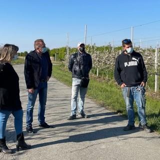 """Gelata straordinaria nei frutteti del Saluzzese, Bongioanni: """"Si garantisca il 40% delle perdite"""" [VIDEO]"""